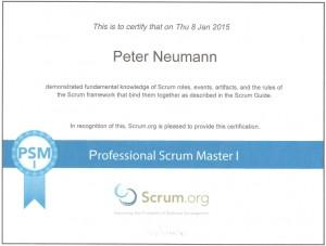 Zertifikat - PSM I - Peter Neumann